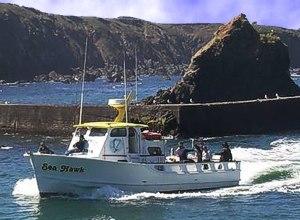 Sea hawk ft bragg ca captain tim for Fort bragg fishing charters