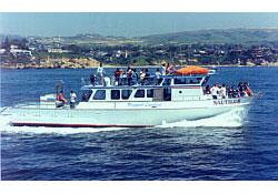 Nautilus newport beach ca captain robbie ellingboe for Newport landing fish report