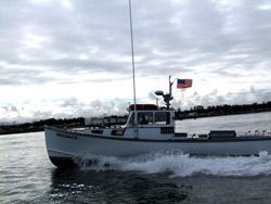 Shellback eureka ca captain tony sepulveda for Eureka ca fishing