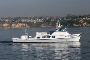 Western pride newport beach ca captains mike harkins for Newport landing fish report