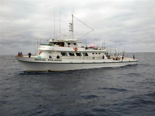 Fish report royal polaris sportfishing trip update 090410 for Franks great outdoors fishing report