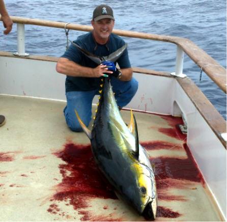 Fish report royal polaris sportfishing trip update 050312 for Royal polaris fishing