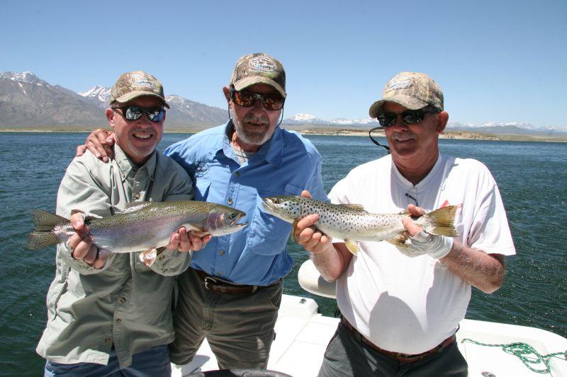 Crowley lake fish report mammoth lakes ca mono county for Mammoth fishing report