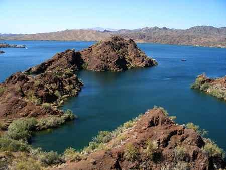 Lake havasu fish report havasu city az for Lake havasu fishing
