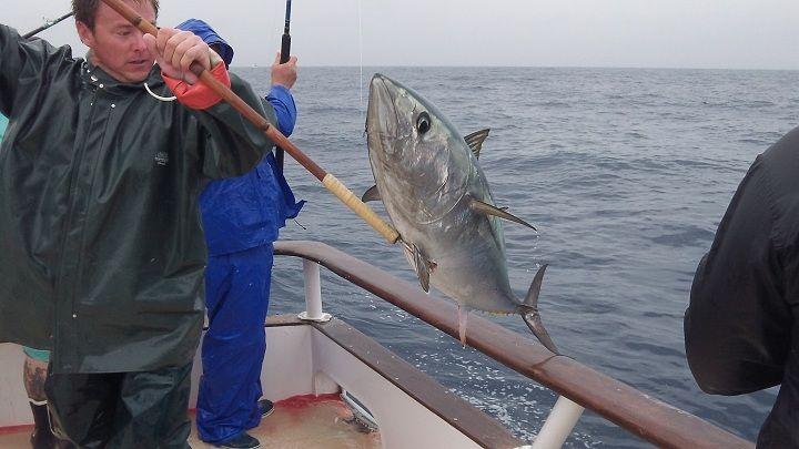 Fish report royal polaris falls just short of bluefin limits for Royal polaris fishing