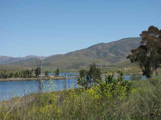 Lower otay reservoir fish report rancho del rey ca san for Otay lakes fishing
