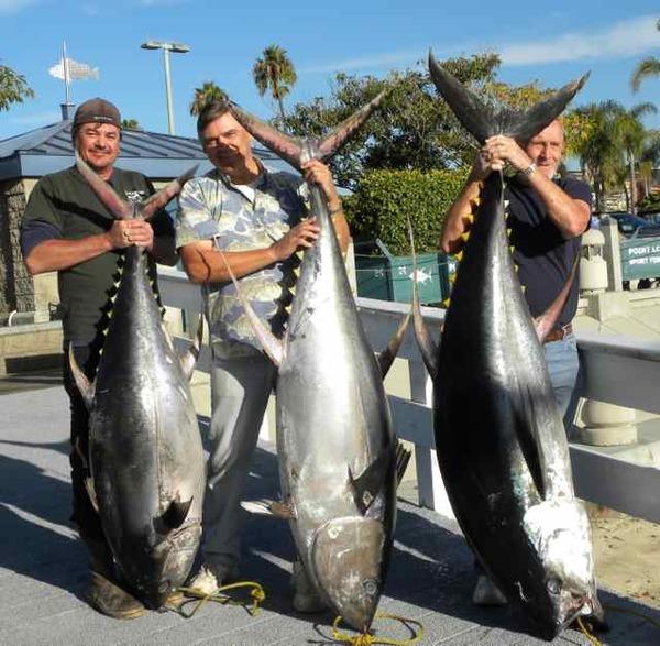 Long range fish report for H m fish count