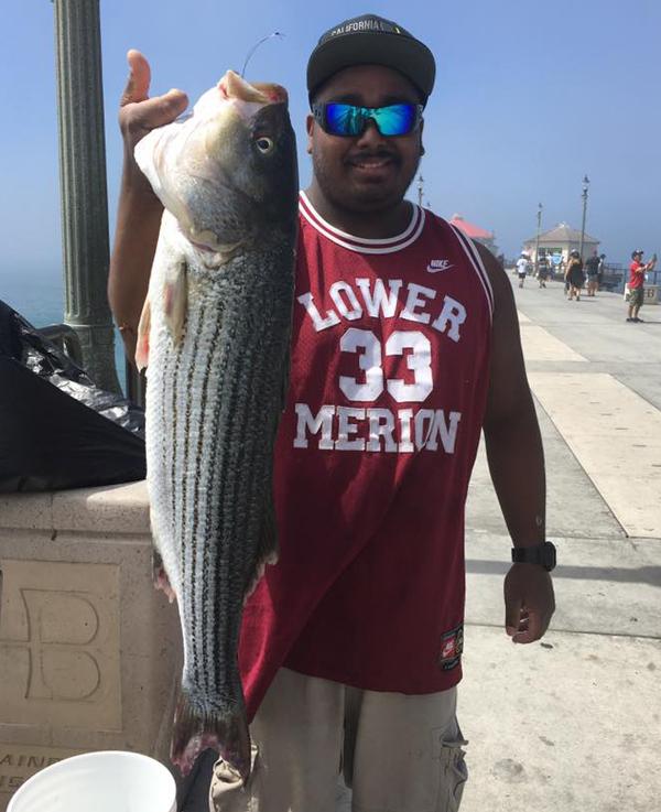 Huntington Beach Pier Fish Report - Huntington Beach, CA (Orange County)
