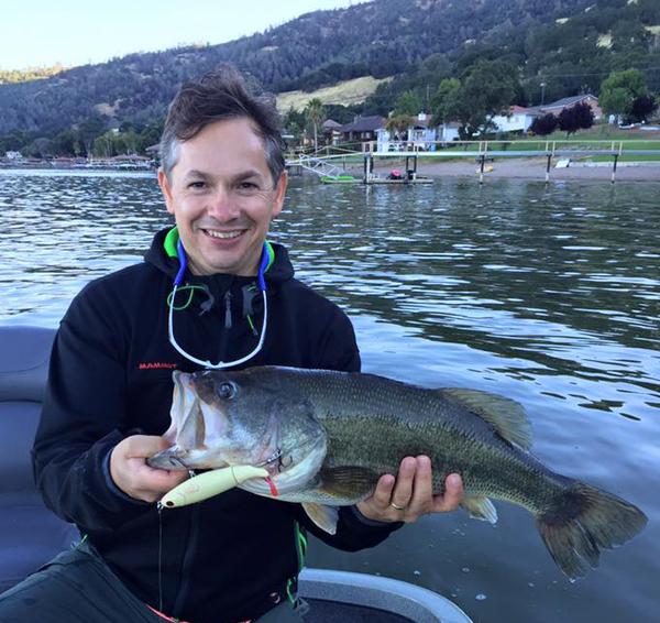 Clear Lake Fish Report Clearlake Ca Lake County