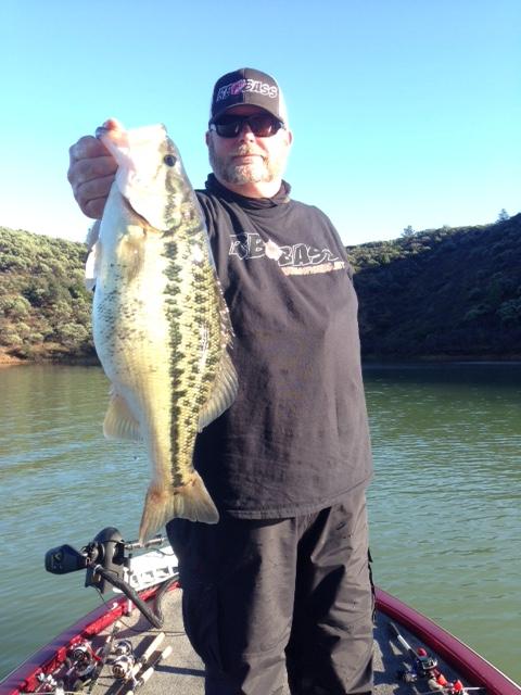 Shasta trinity fish reports for Lake shasta fishing report