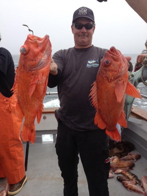 Stardust fishing at santa rosa island for Santa barbara fishing report