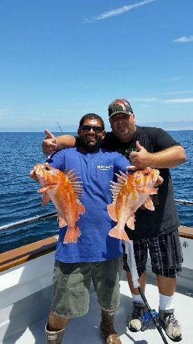 Santa cruz fishing report for stagnaro fishing trips and for Santa cruz fishing report