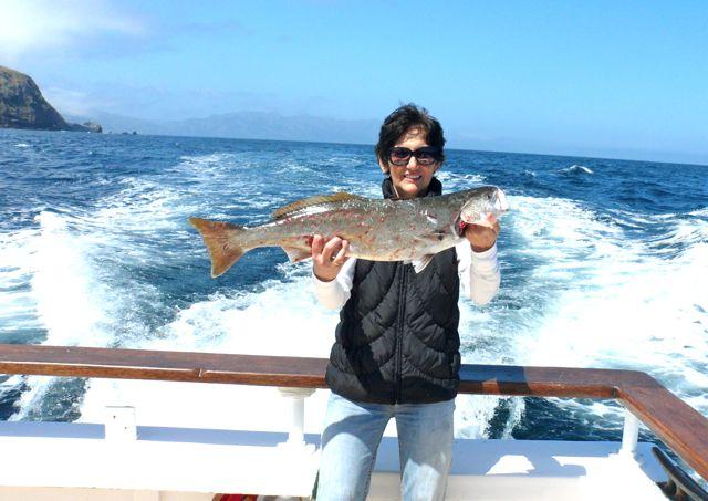 Channel islands sportfishing center channel islands for Channel islands fishing