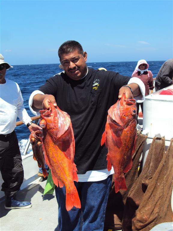 Ventura sportfishing ventura landing memorial day 3 4 for Ventura sport fishing