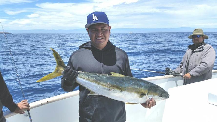 Channel islands sportfishing center sunday at cisco 39 s for Cisco s sportfishing fish count