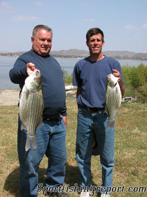 Lake elsinore fish report lake elsinore ca riverside for Lake elsinore fishing report