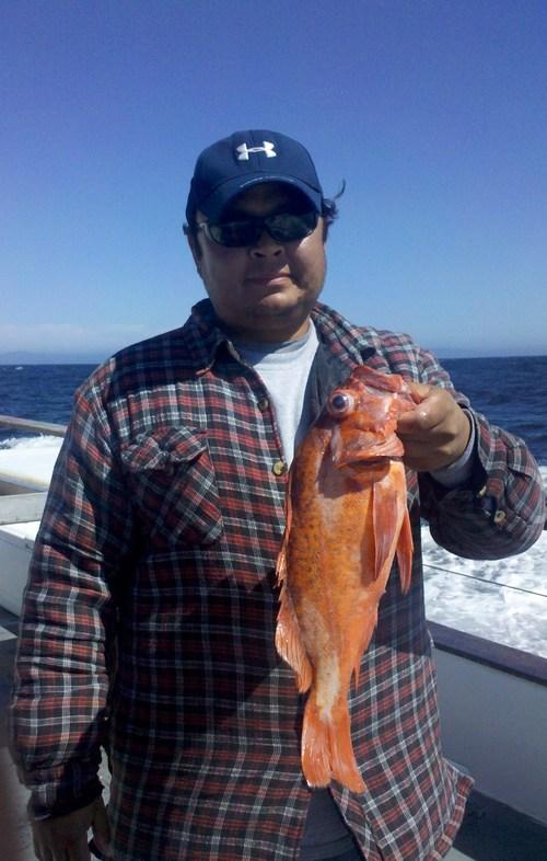 Santa cruz island fish report for Santa cruz fishing spots