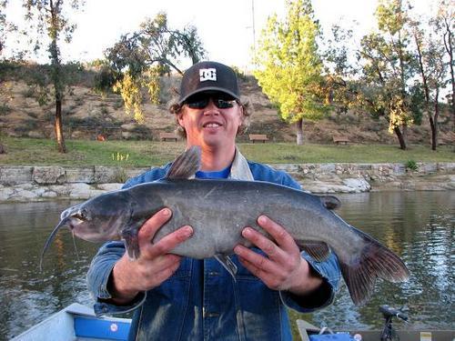 Lake poway lake poway fishing report for week ending 24 for San diego lake fishing report