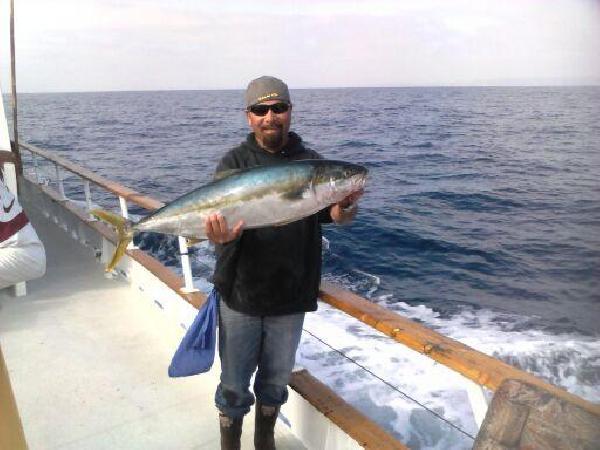 Point loma sportfishing plsf upcoming trips for Point loma sportfishing fish count