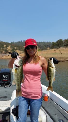 Bass lake fish report montague ca for Bass lake ca fishing