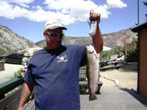 South lake fish report bishop ca inyo county for Bishop ca fishing