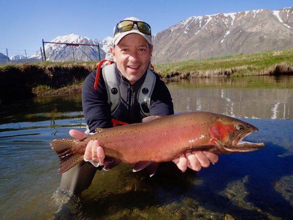 McGee Creek Fish Report - Mammoth Lakes, CA (Mono County)
