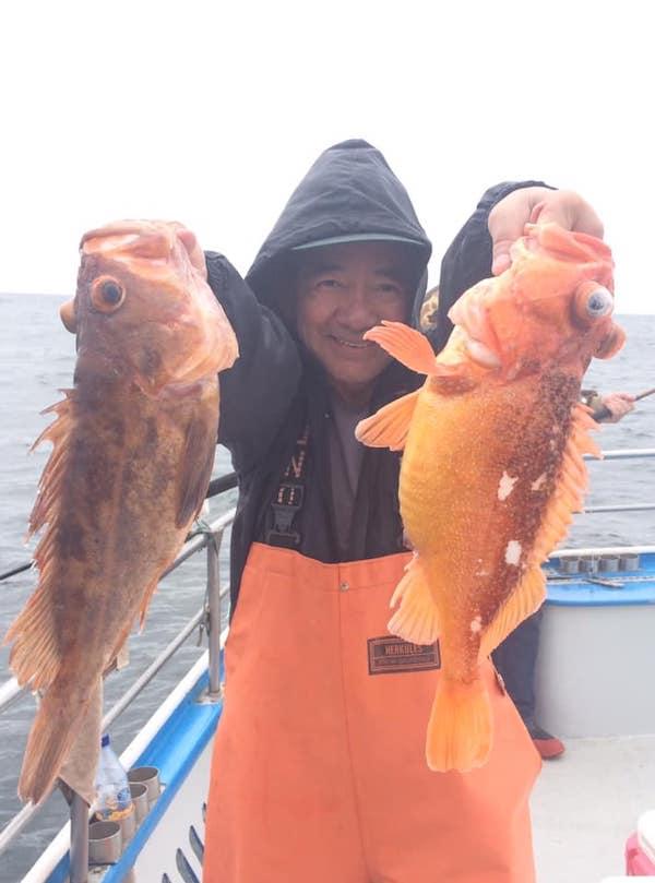 Stripedbass Fish Reports