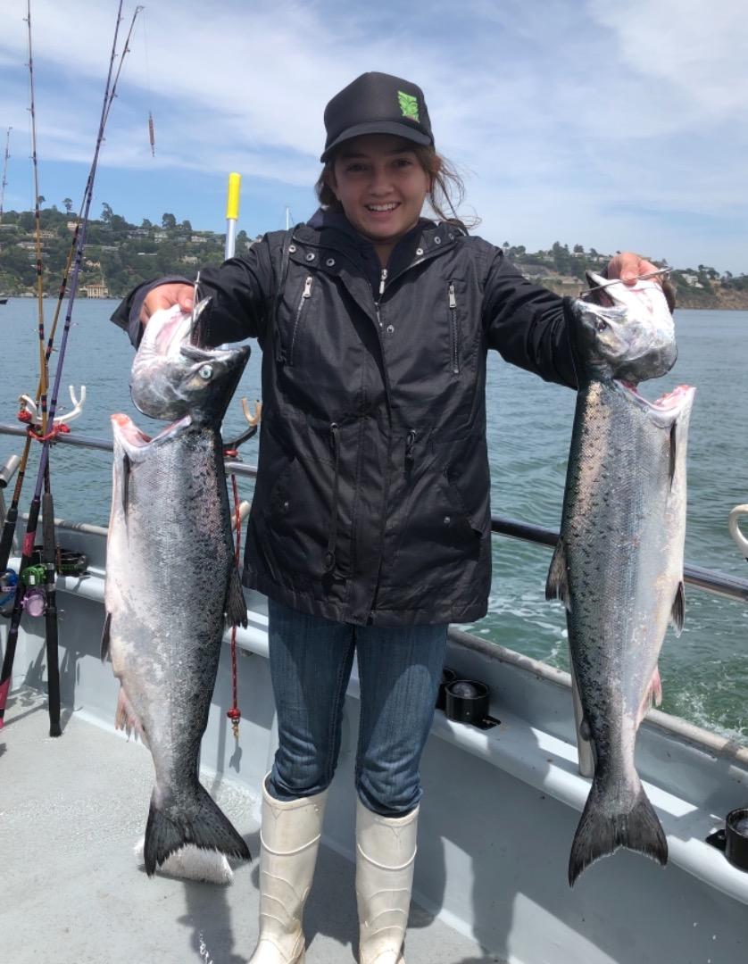 Chinooksalmon Fish Reports
