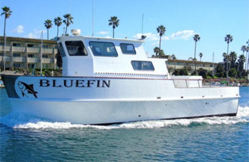 Bluefin sportfishing fish report for San diego sportfishing fish counts
