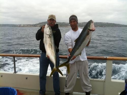 La jolla kelp beds fish report for La jolla fishing