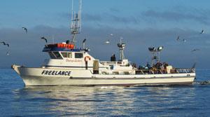 Website Www Daveyslocker Fishing Charters Boat Als