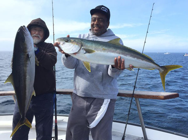 California yellowtail counts by boat september 19 2016 for Oxnard fish count