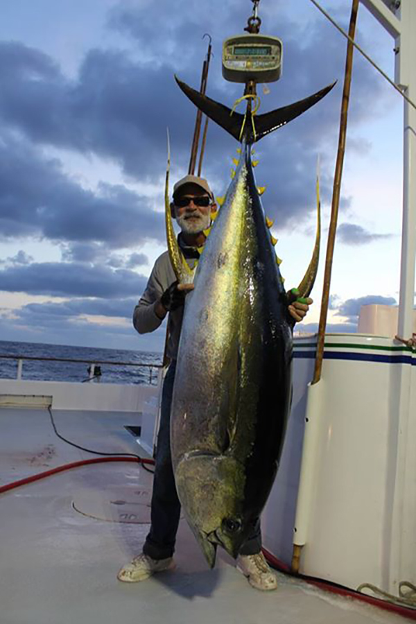 Fisherman 39 s landing fish report for Fish count san diego