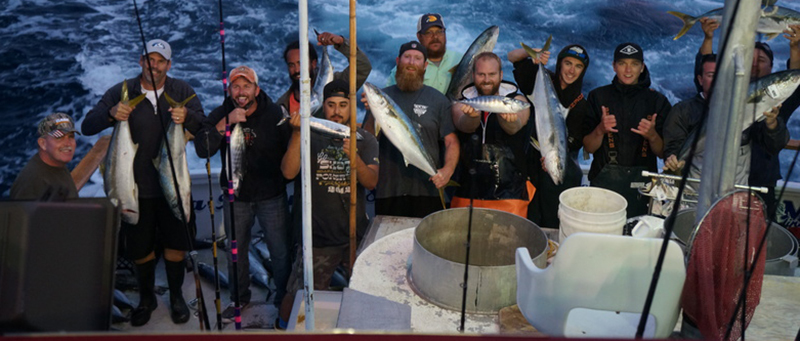 California yellowtail counts by boat june 11 2017 for Newport landing fish report