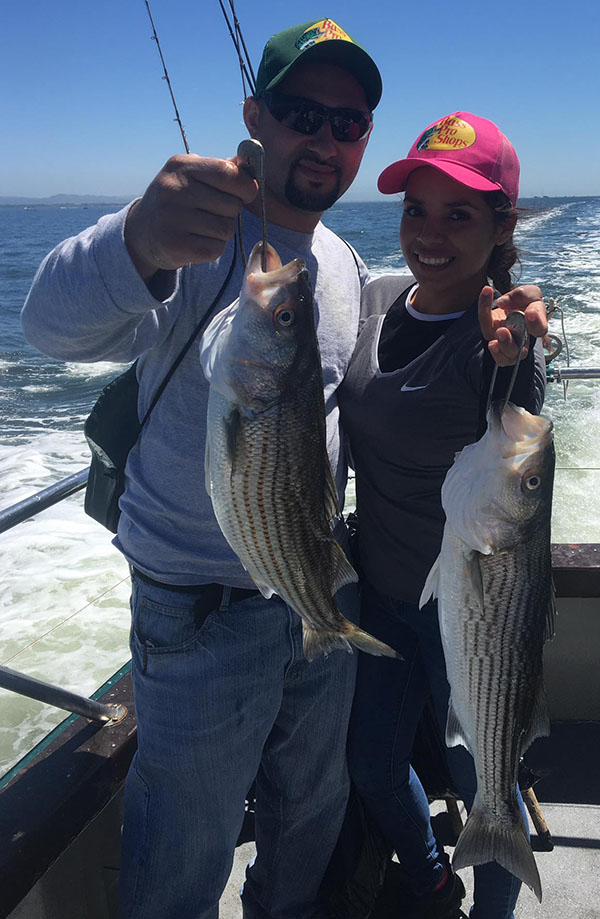 Sf bay area fishing report best fish 2017 for Bodega bay fishing charters