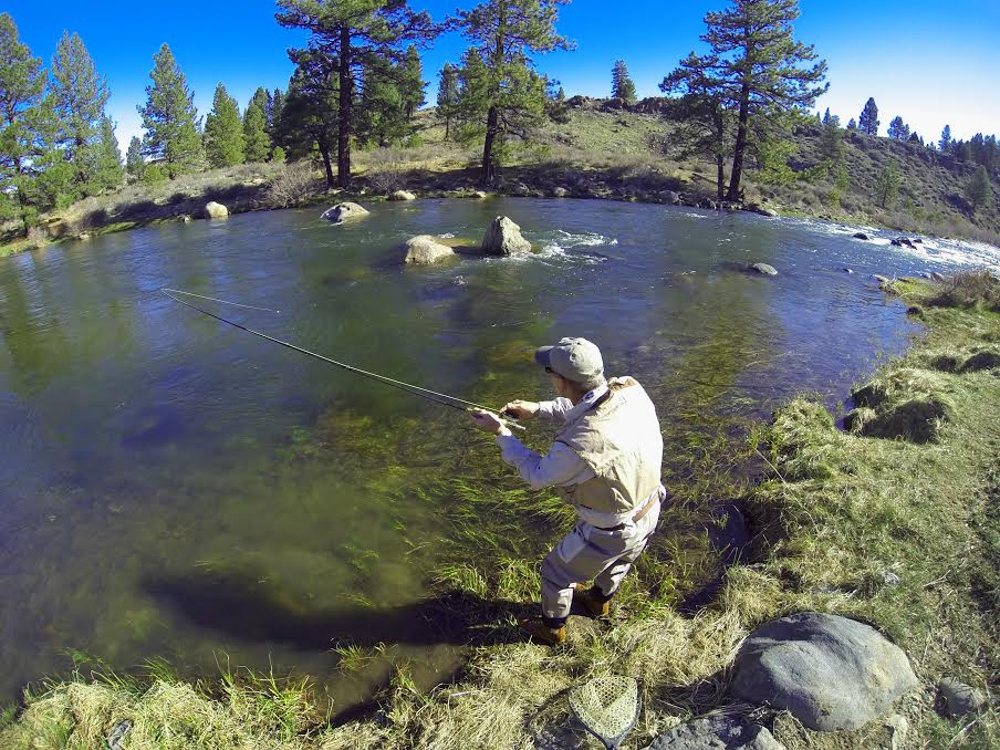 Fishing - The Truckee River – The Blue Ribbon of the