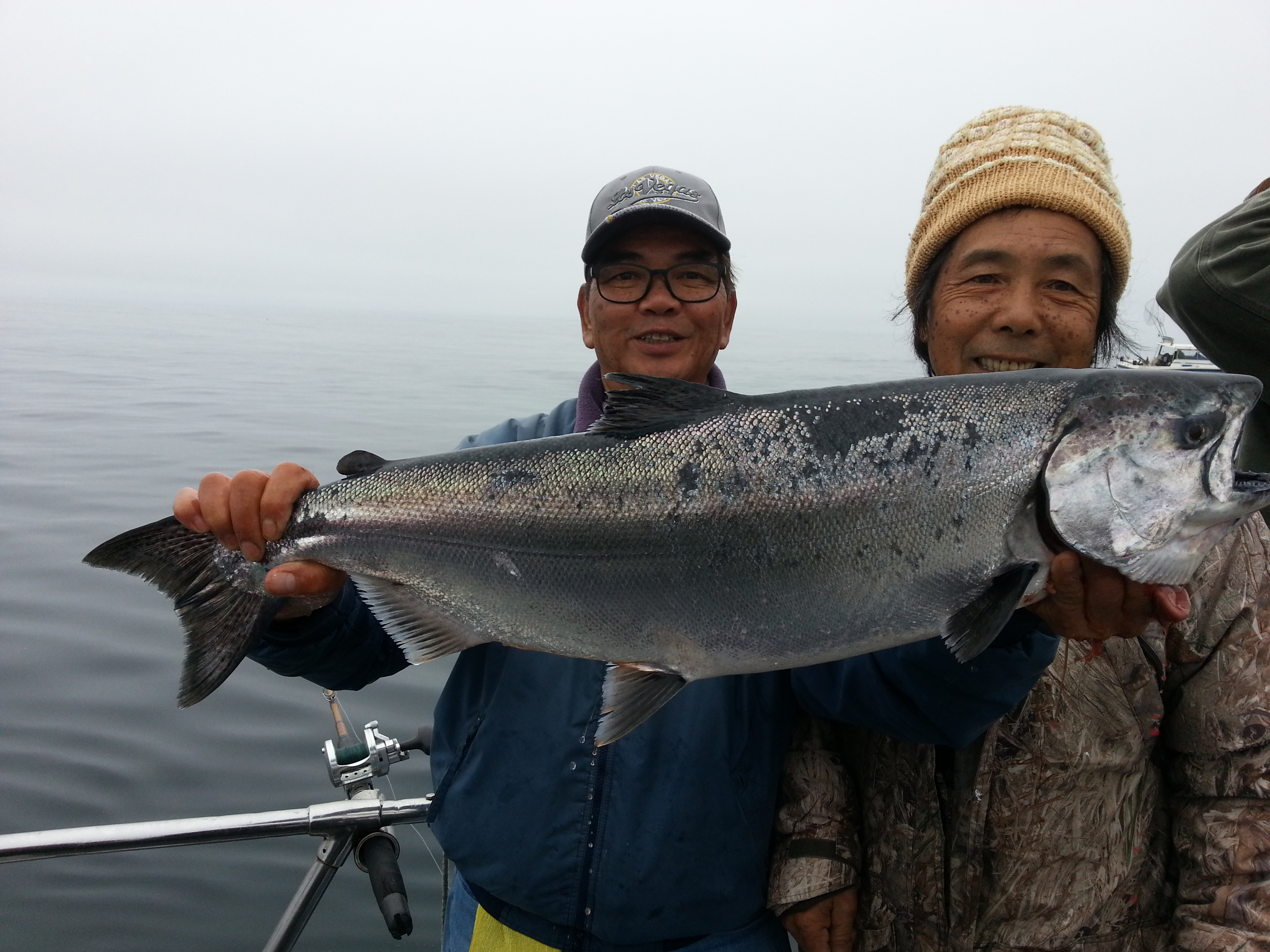 Chinook salmon counts by boat july 31 2017 for Capt al fishing report