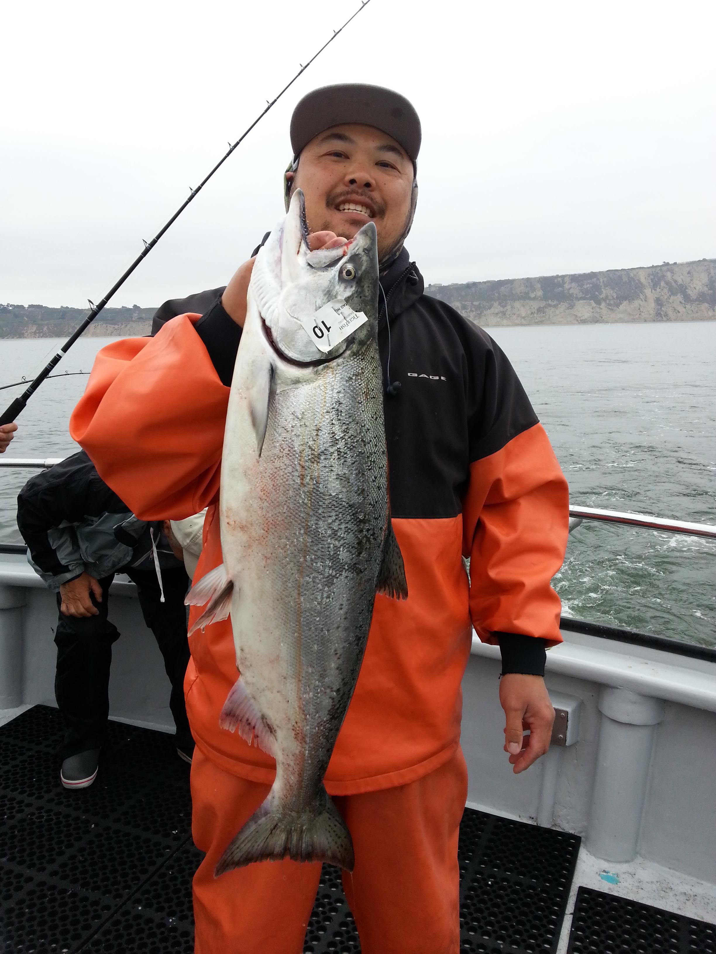 Chinook salmon counts by boat august 22 2017 for Capt al fishing report