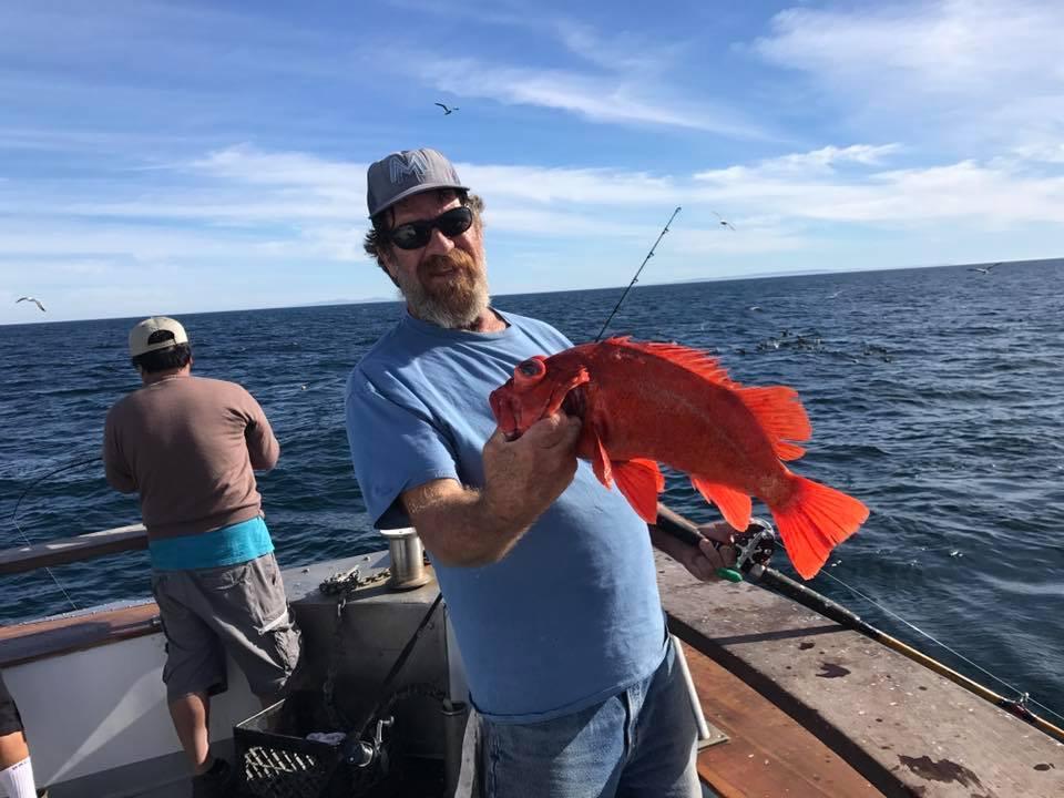 Vermilion rockfish counts by boat november 20 2017 for Santa barbara fishing report