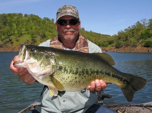 Pardee reservoir fish report ione ca for Fisherman s landing fish report