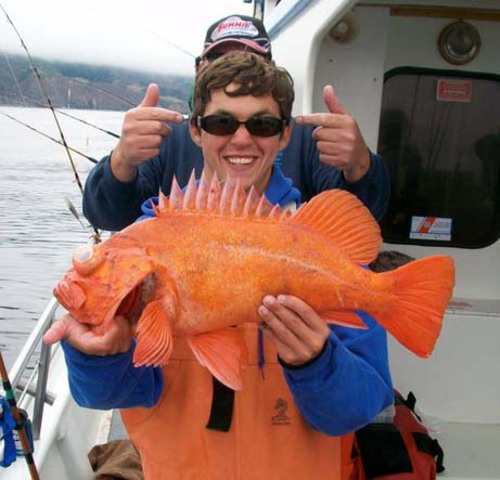 Kahuna good fishing today for Fisherman s landing fish report