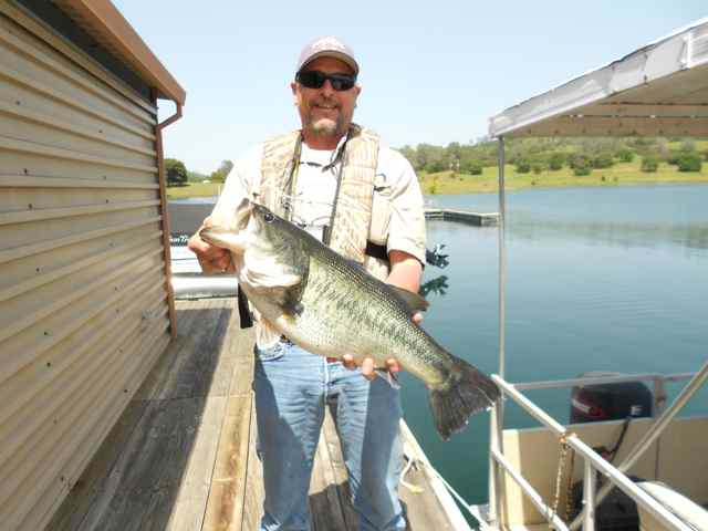 Pardee reservoir fish report ione ca for Trinity bay fishing report