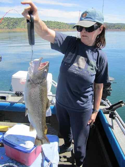New melones reservoir fish report angels camp ca for Norcal fishing report