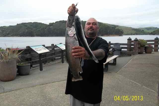 San pablo reservoir fish report el sobrante ca contra for Sf bay fishing report