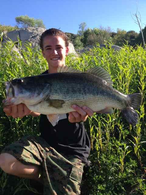 Lake morena largemouth bass were featured this week at for San diego lake fishing report