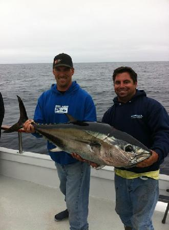 Seaforth sportfishing bluefin tuna for Seaforth landing fish count