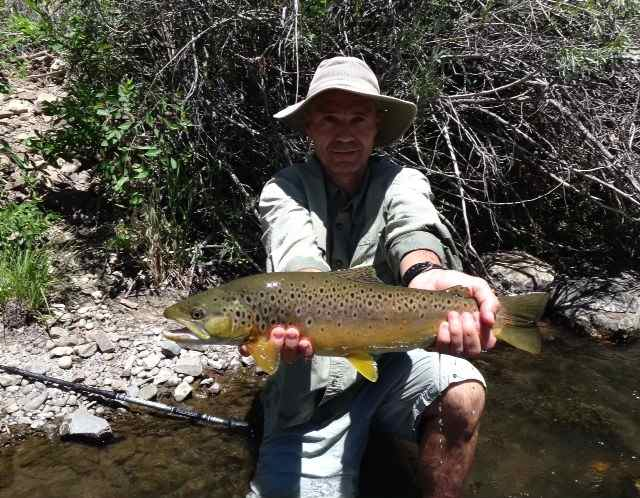 Truckee river fish report for Odfw fishing report