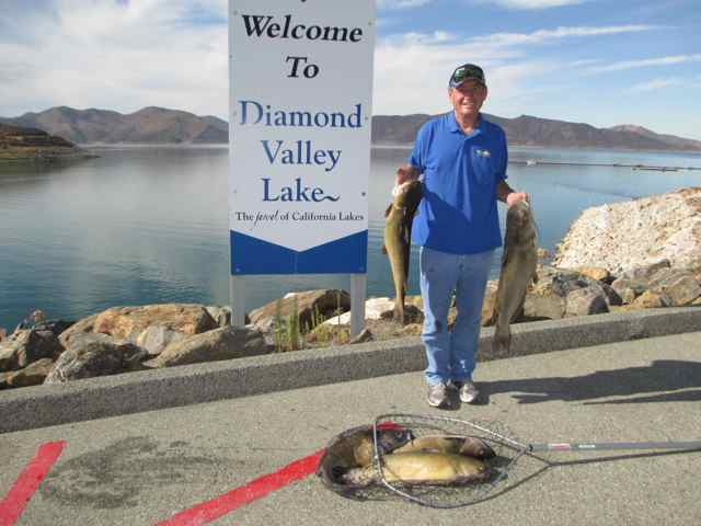 diamond valley lake fish report hemet ca riverside county