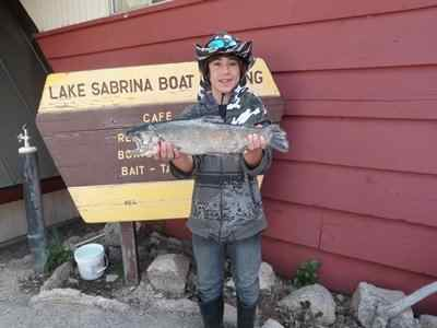 lake sabrina fish report bishop ca inyo county