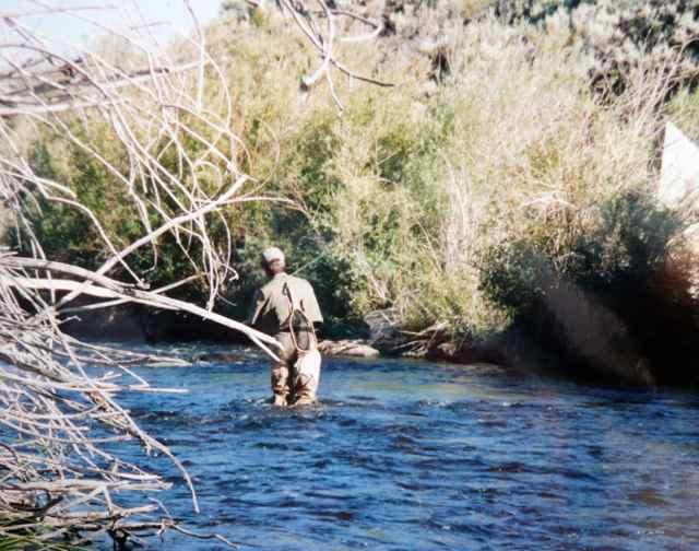 Walker River East Fork Ca Fish Report Bridgeport Ca